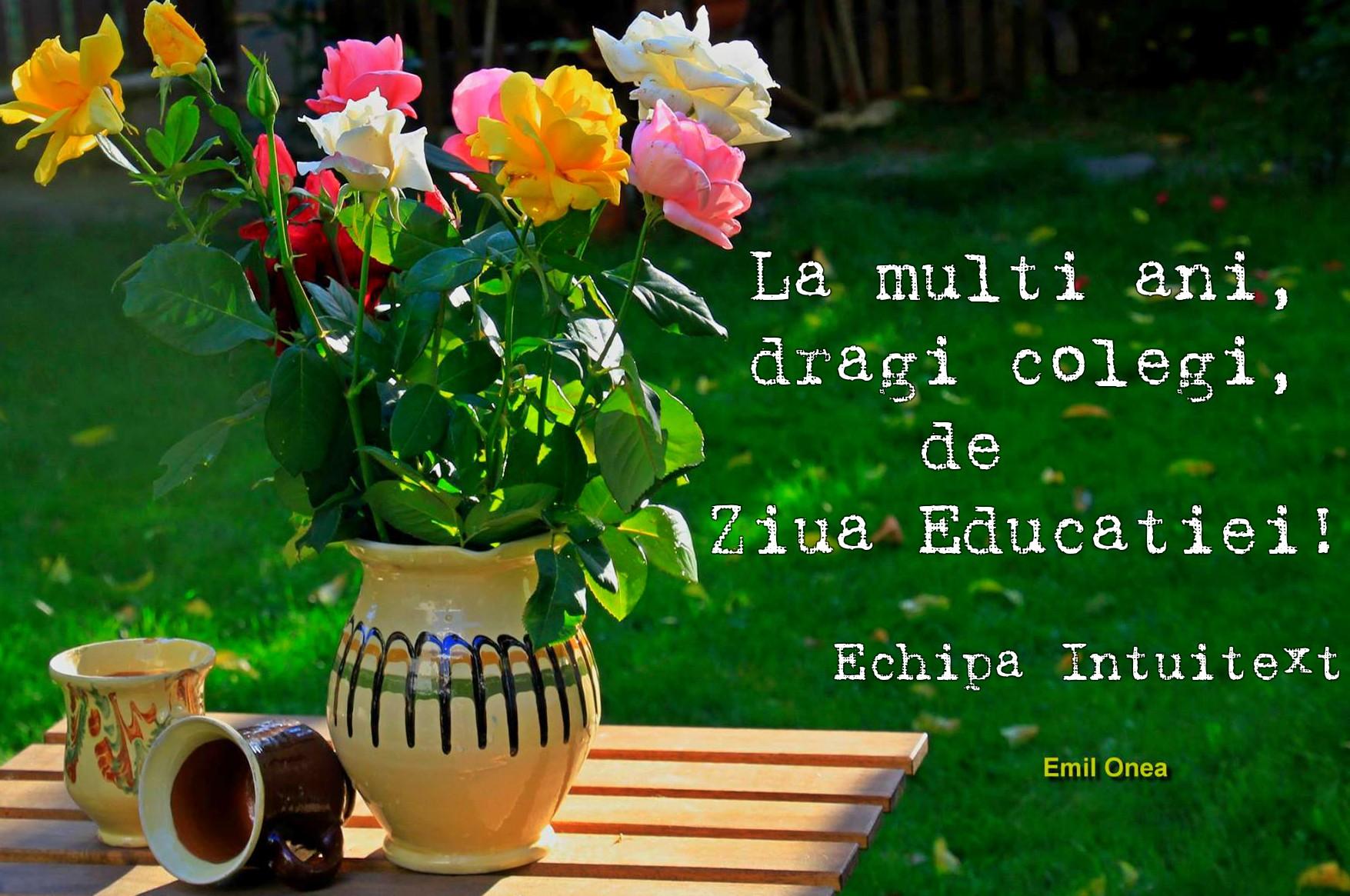 Ziua Educatiei