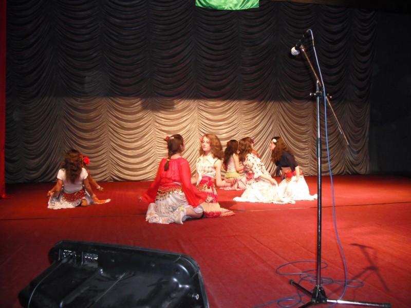 imagini de la spectacolul zilei internationale a rromilor
