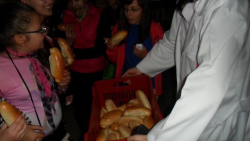Vizita la fabrica de paine