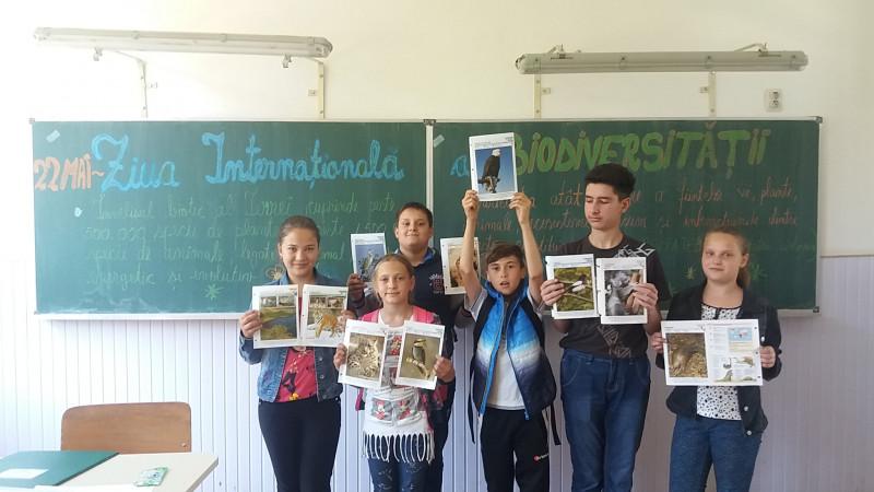 Elevii Școlii Gimnaziale Florești au marcat Ziua Internațională a Biodiversității. Ei știu că protejarea mediului înconjurător trebuie să reprezinte un stil de viață și nu protejăm natura doar cu prilejul unui anumit eveniment.