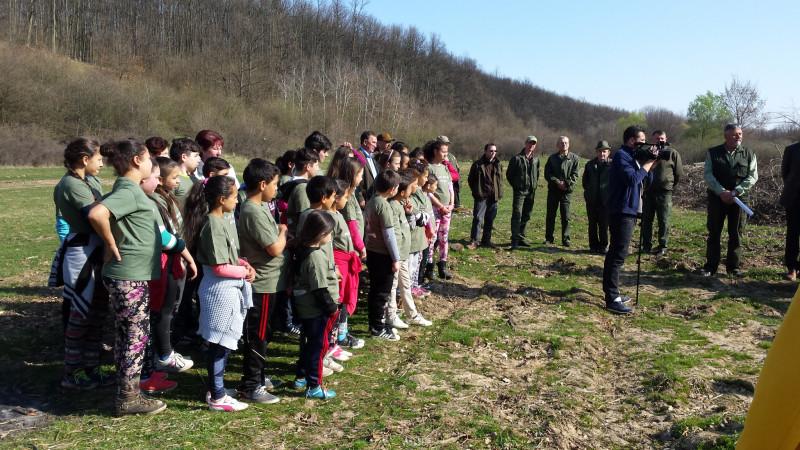 Activitate de  reinpadurire  2017  cu  participarea  elevilor  scolii  noastre .