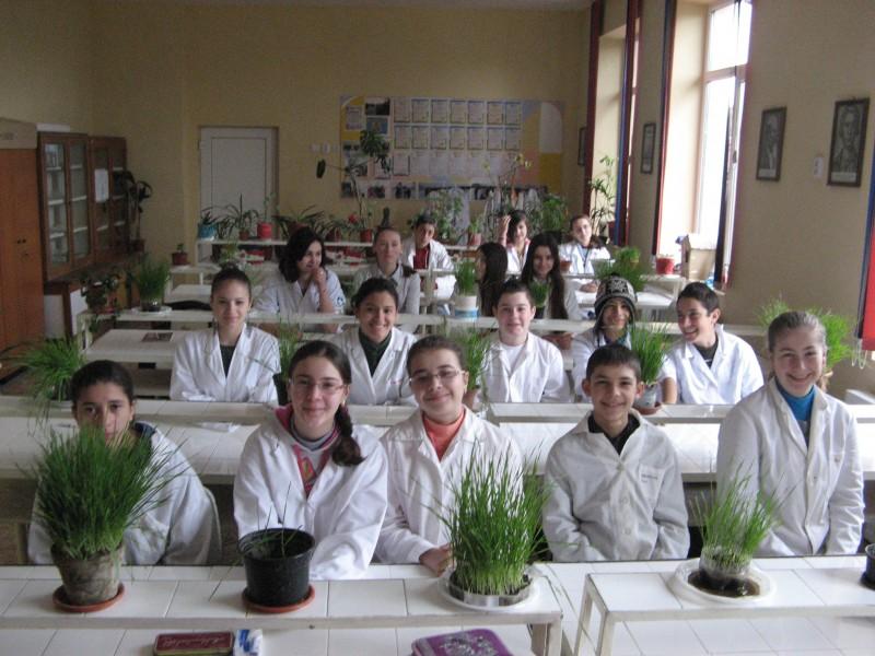 ,,Gradina,, din laborator