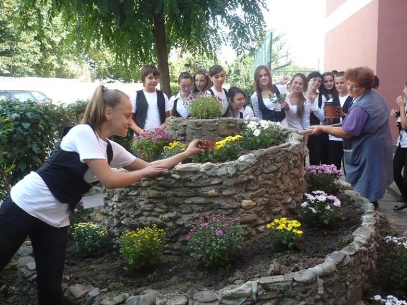 Elevii Scolii ''Nicolae Iorga'' Bacau au plantat flori in curtea scolii.