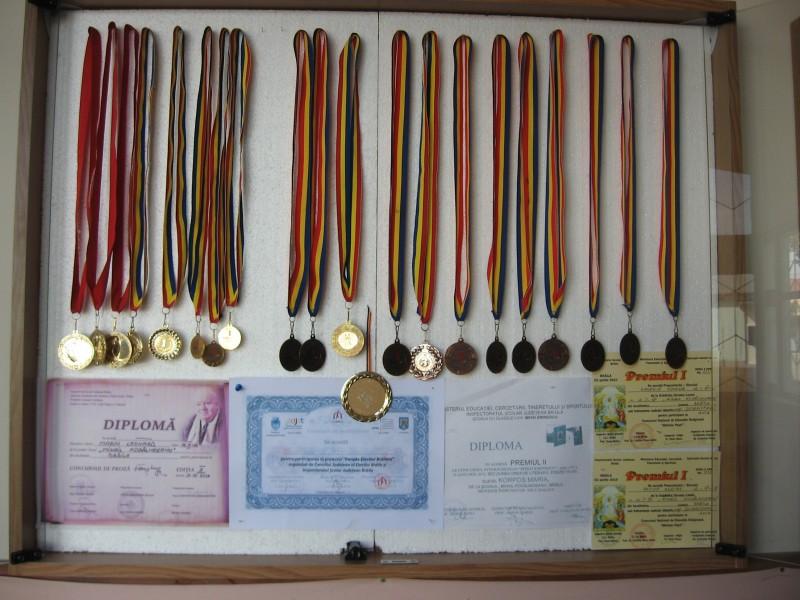 medalii obtinute