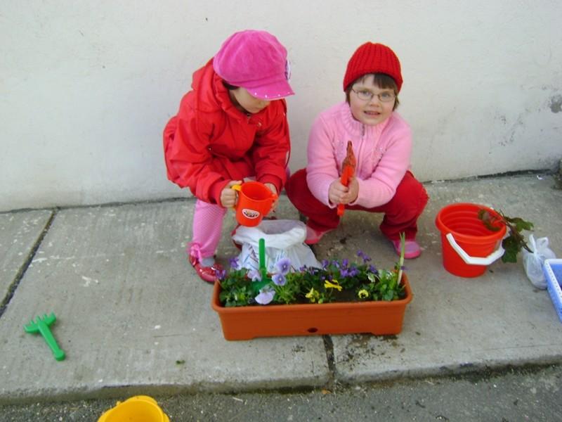 Avem grija de flori