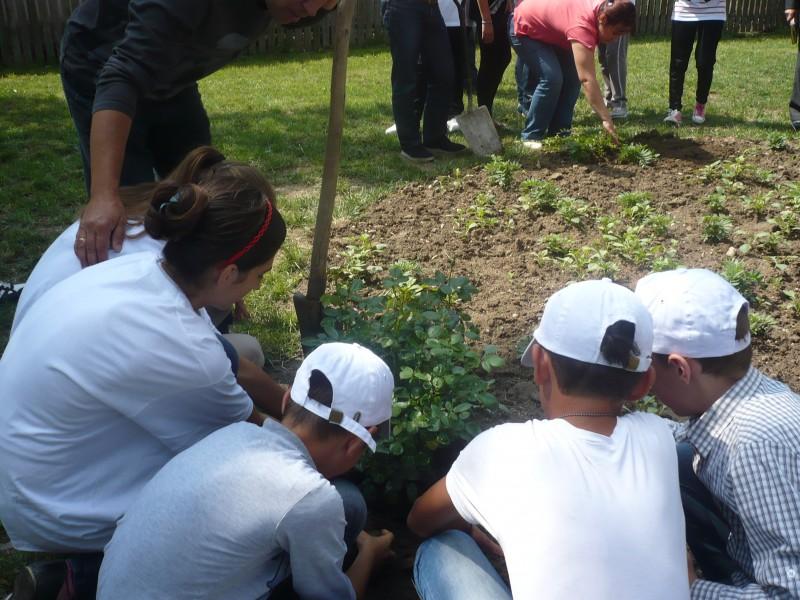 """Activitate desfășurată pe tema protecției mediului in cadrul evenimentului """" Natura - prietena ta"""", in colaborare cu Consiliul Judetean Dambovita - 14 iunie 2013"""