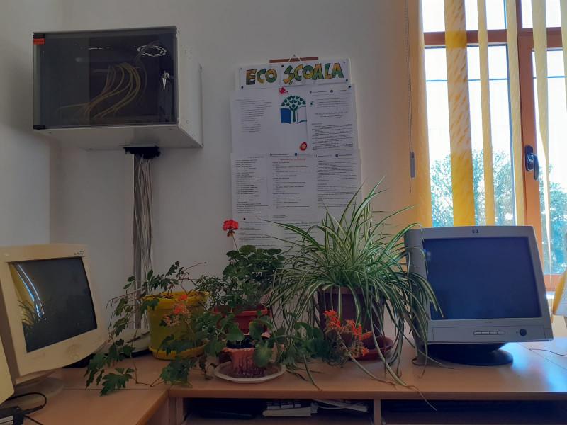 Eco-Școala