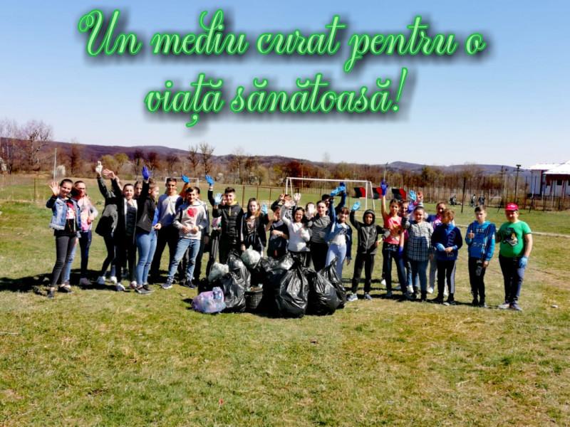 Activitate de ecologizare în curtea școlii.