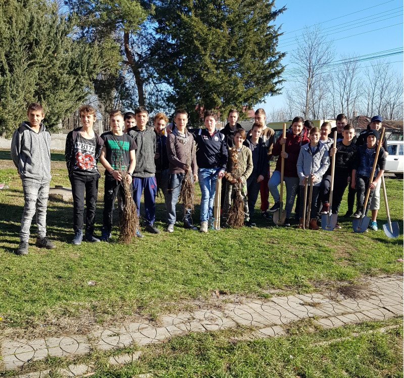 O echipa de elevi voluntari din cadrul scolii, au participat la campania de plantare a 100 de puieti de stejar.