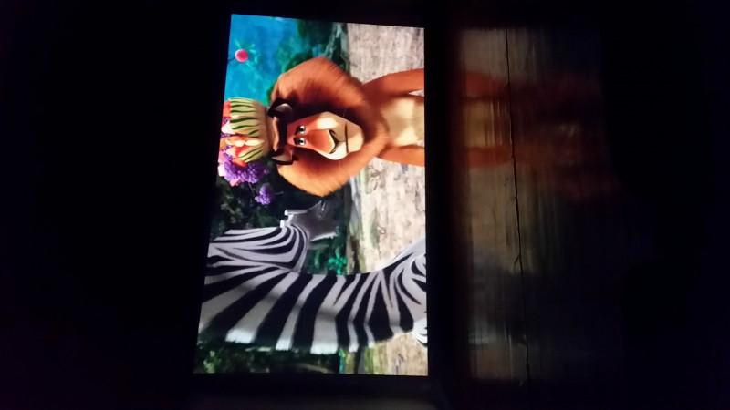 """Film de animatie - """"Madagascar 2"""""""