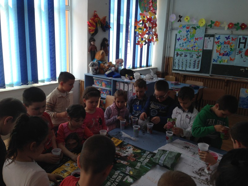 Gradinarii iscusiti-elevii din clasa pregatitoare Step By Step A de la Scoala Gimnaziala George Cosbuc Sighet