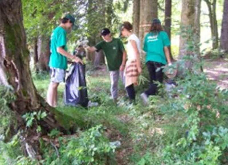 actiune de voluntariat