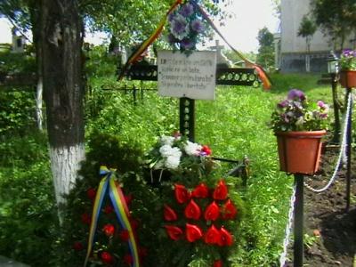 ziua_eroilor_criseni_2010_029_400